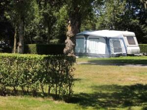 web-camping